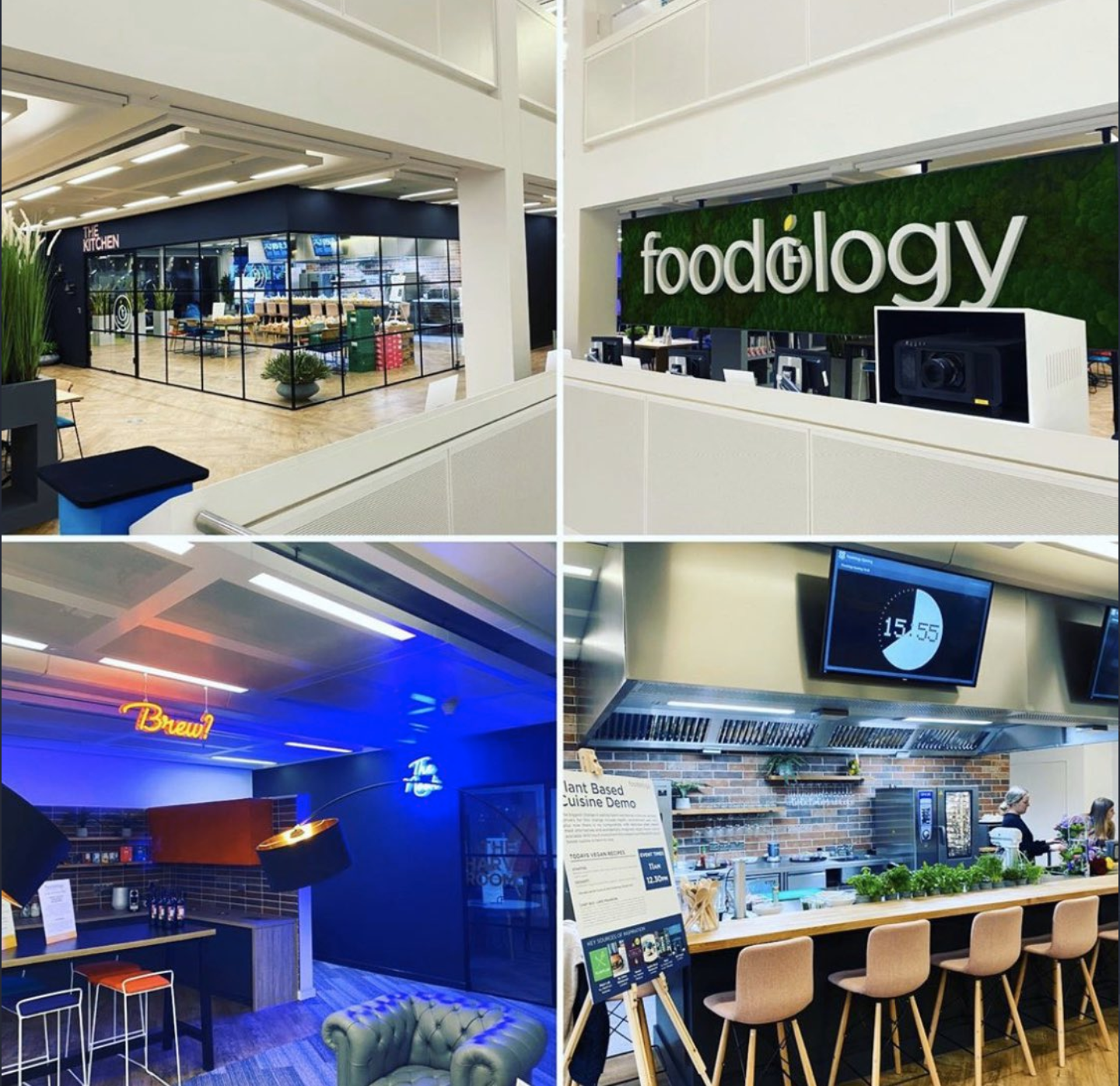 Images from the Foodology by Co-op Launch including grass walls with the logo, the inside of the glass cube and the kitchen